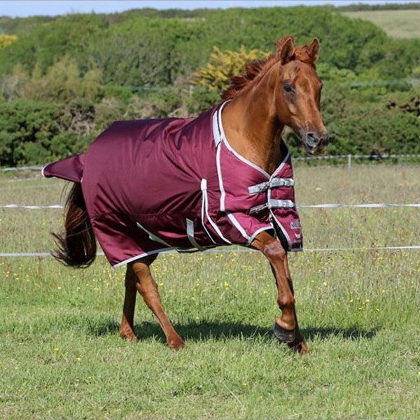 guardian equestrian fence buster electric fence turnout rug