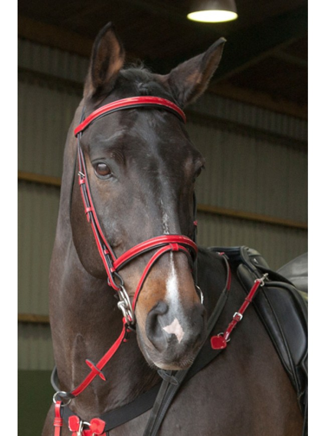patent, bridle, red