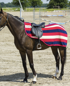 equi theme stripe exercise sheet in various sizes, raspbery navy and beige colour.