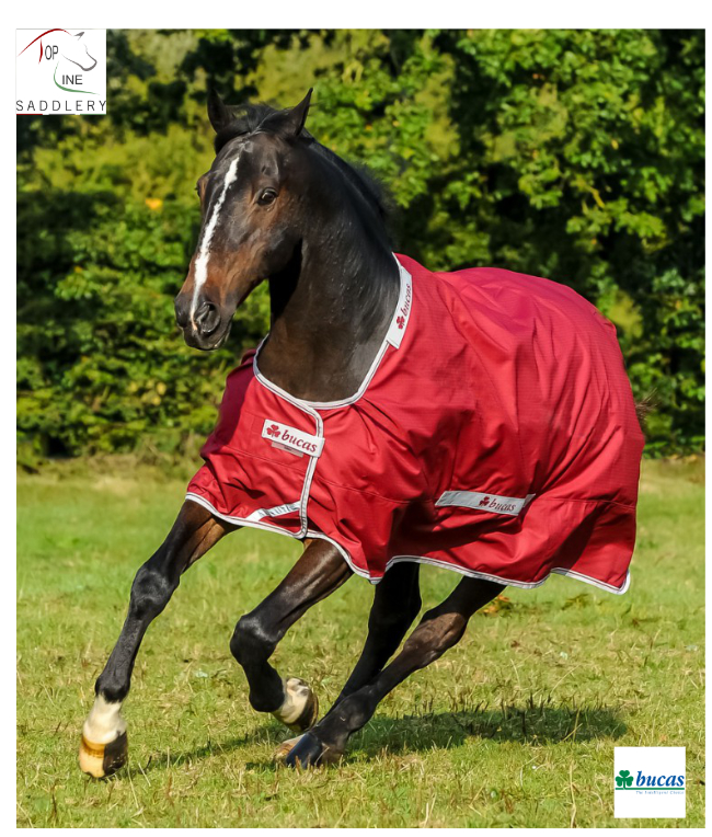 bucas select turnout rug lightweight